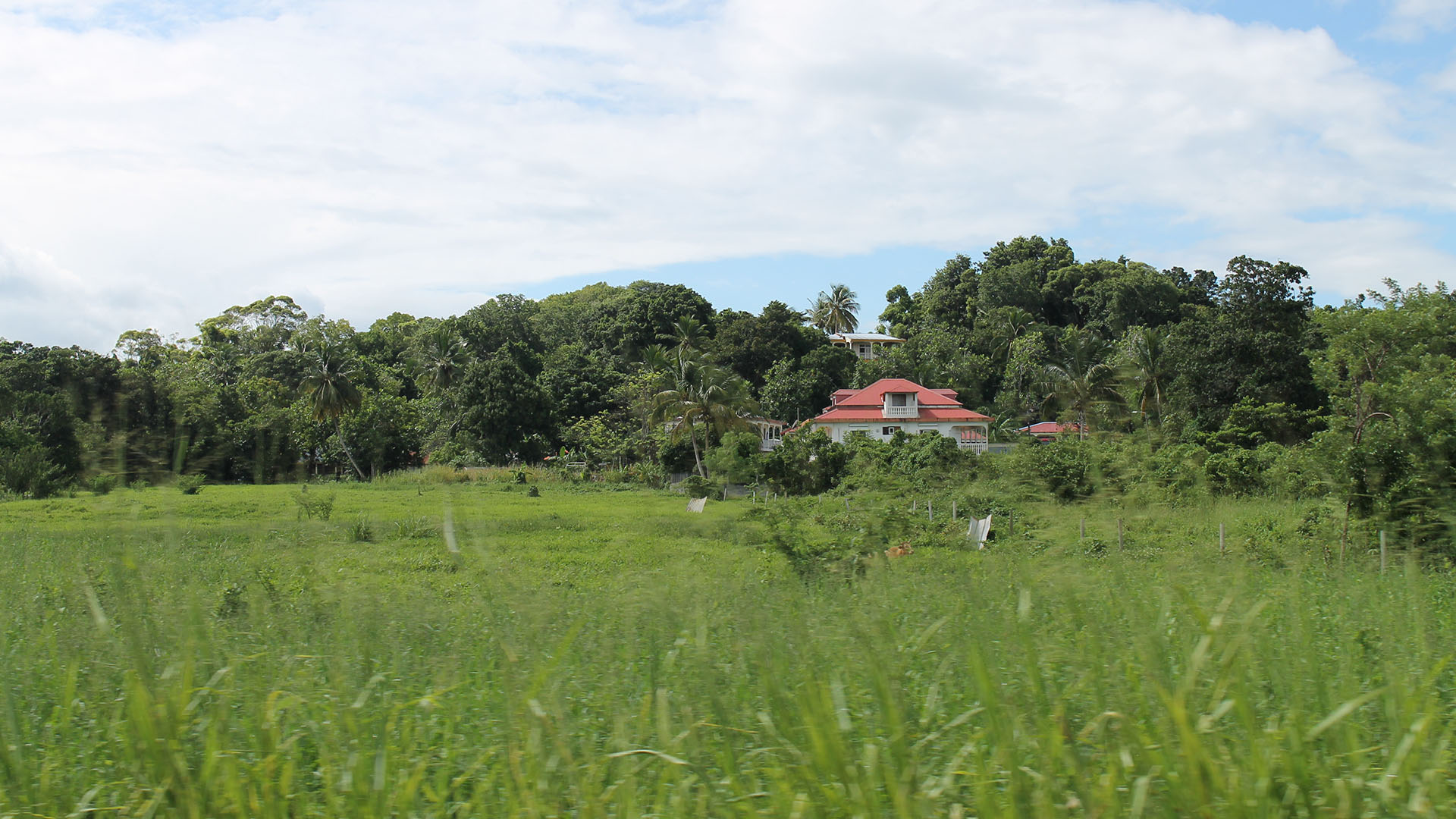 huis op marie galante guadeloupe